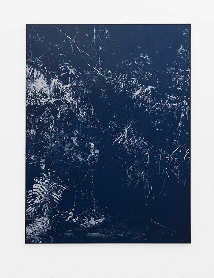 Peter Eastman   Late Shadow Riverbank   2018   Oil on Aluminium   184.5 x 149.5 cm