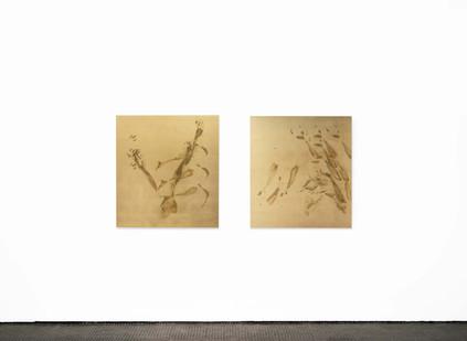 Pierre Vermeulen | Sweat Print no. 21 and 22 | 2020 | Installation View