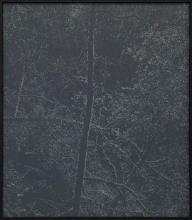 Peter Eastman   Deep Chine - Coldstream X   2017   Oil on Aluminium   40 x 34 cm