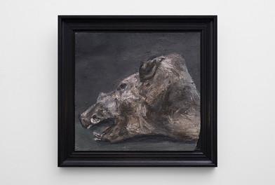 Johann Louw | Klein Stillewe met Bosvarkkop | 2017 | Oil on Panel | 45 x 47 cm