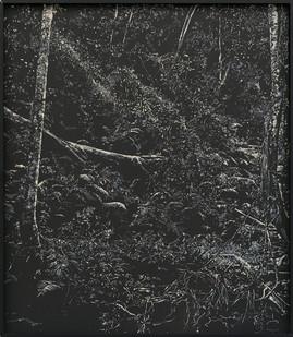 Peter Eastman   Deep Chine - Coldstream V   2016   Oil on Aluminium   40 x 34 cm