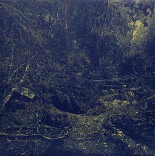 Peter Eastman   Flood III   2015   Oil on Aluminium   200 x 200 cm
