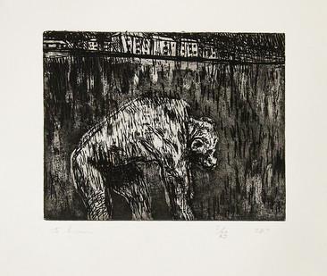Johann Louw | Sjimpanzee | 2017 | Etching | 29.8 x 35.5 cm | Edition of 25