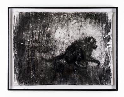Johann Louw | Bobbejaan Sywaarts | 2018 | Charcoal on Paper | 61 x 83 cm
