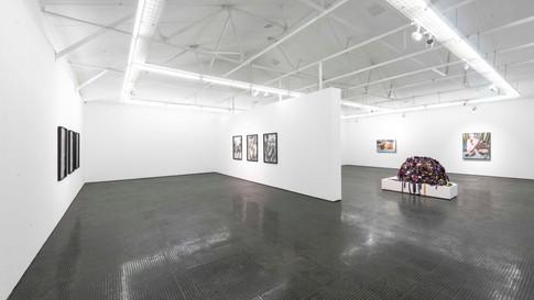 Frances Goodman   Uneventful Days   2020   Installation View