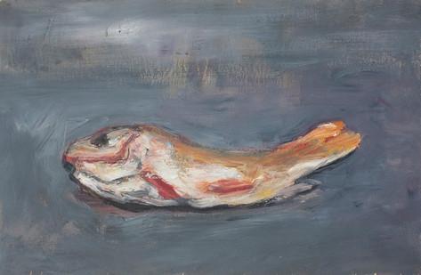 Johann Louw | Goudvis | 2013 | Oil on Plywood | 30 x 40 cm