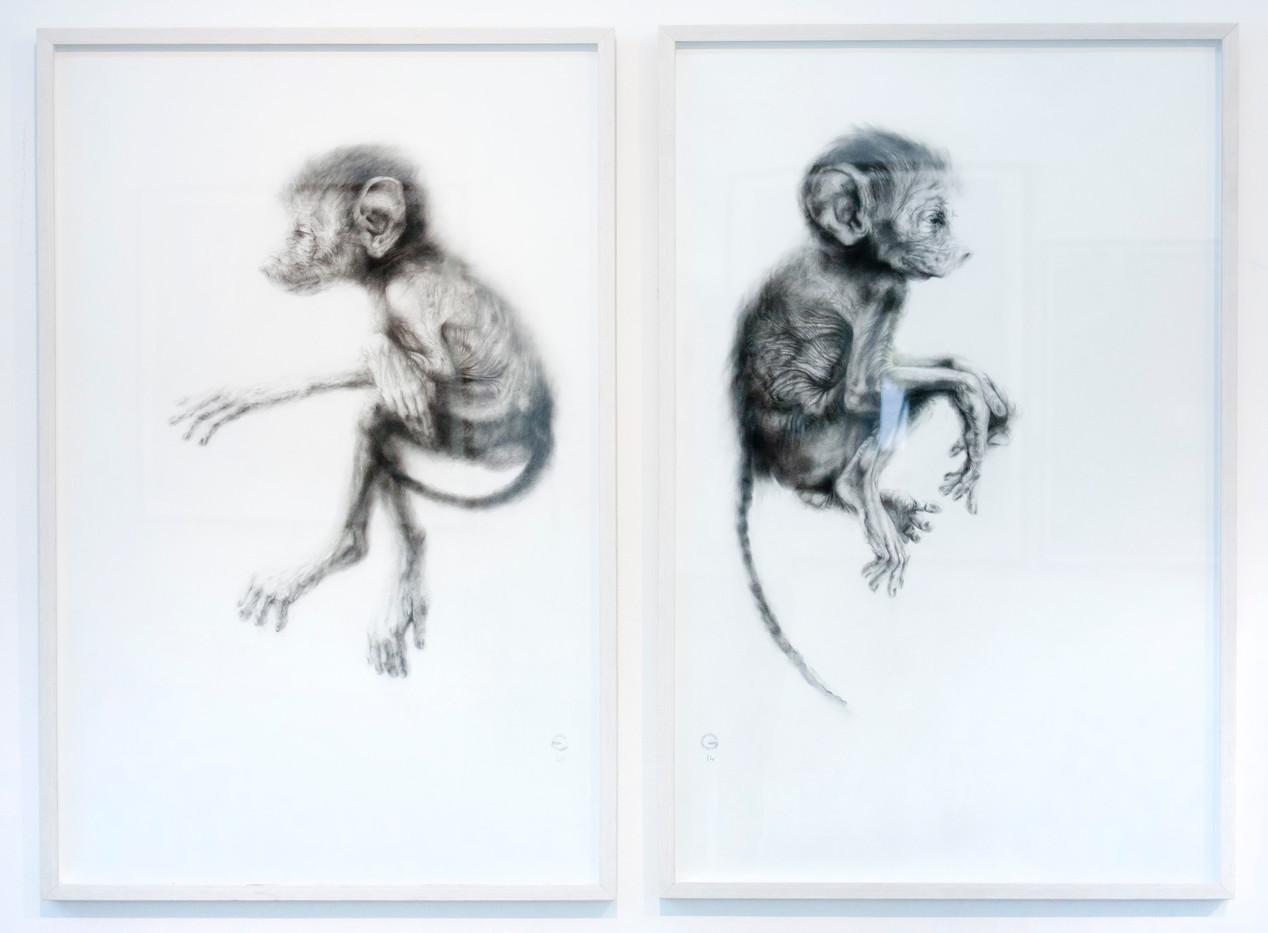 Elizabeth Gunter | Slippage Between | 2014 | Charcoal Dust on Paper | Diptych | 99 x 64 cm Each