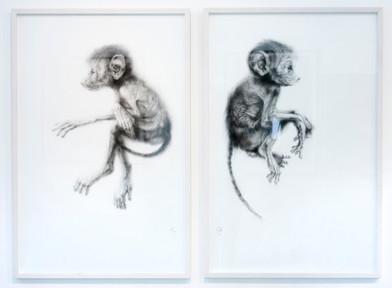 Elizabeth Gunter   Slippage Between   2014   Charcoal Dust on Paper   Diptych   99 x 64 cm Each