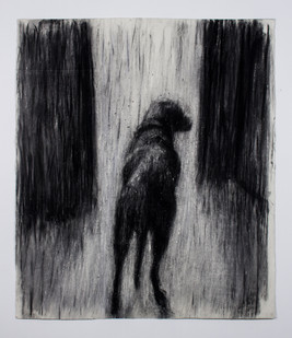 Johann Louw | Hond van Agter | 2014 | Charcoal on Paper | 151 x 124 cm