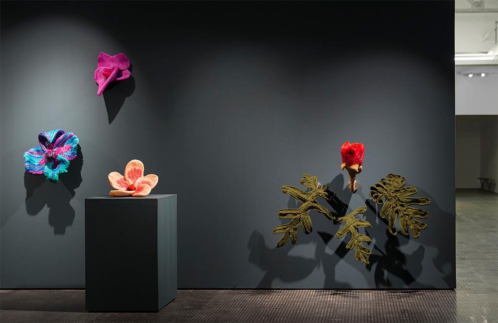 Frances Goodman   Degreened   2016   Installation View