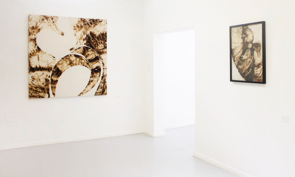 Sandile Zulu | ARTOMS: Histopathology, Regeneration and Other Cases | 2012 | Installation View