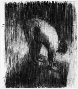 Johann Louw | Handeviervoet | 2014 | Charcoal on Paper | 189 x 165 cm