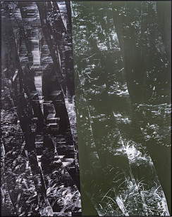 Peter Eastman | Split Painting | 2019 | Oil on Aluminium | 185 x 150 cm