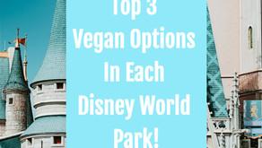 Top 3 Vegan Options In Each Disney World Park!