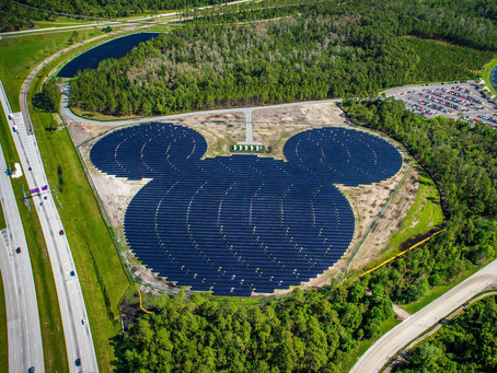 How To Be Eco Friendly At Disney World!