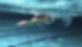Capture d'écran 2020-01-10 à 17.01.27.pn