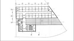 planta97-95.jpg