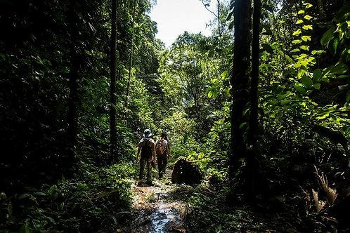 Tour Aventura en la Selva - 3 Días / 3 Noches