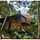 Thumbnail: Tour Aventura en la Selva - 3 Días / 3 Noches