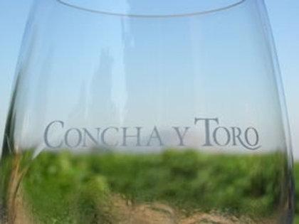 Tour Concha y Toro - Viña Santa Rita