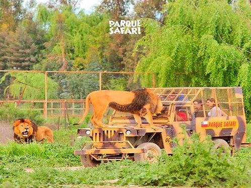 Parque Safari Rancagua