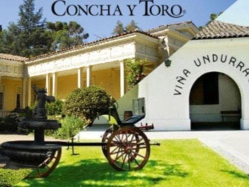 Viña Concha y Toro + Viña Undurraga