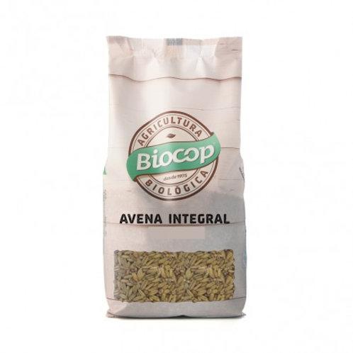 Avena Integral 500g Biocop