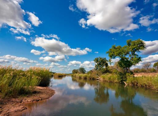 Парк «Болота и окрестности озера Св. Люсии», ЮАР