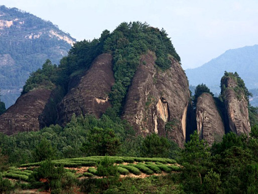 Гора Уи, Китай