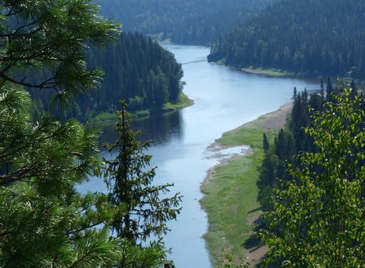Девственные леса Республики Коми, Россия