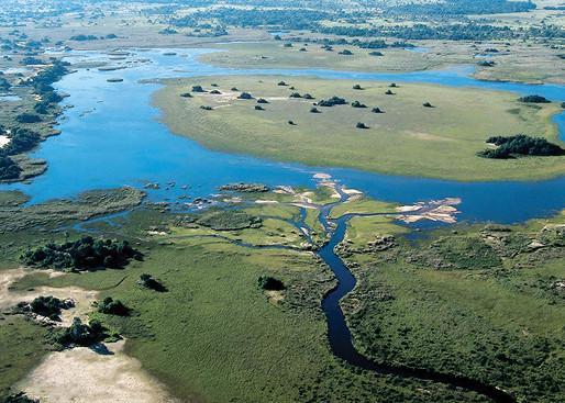 Пустыня Калахари и дельта реки Окаванга, на территории ЮАР, Ботсваны и Намибии