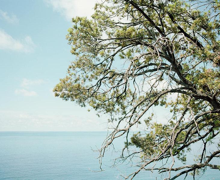 méditerranéee.jpg