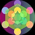 logo holotropic.jpg