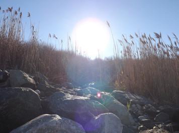 Montauk Rocks by Lighthouse