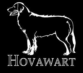 Ховаварт в стойке-3 (2)_1_1.jpg