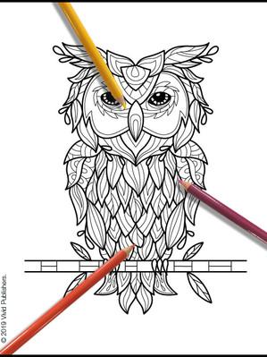 Botanical_Animals_27_Owl.jpg