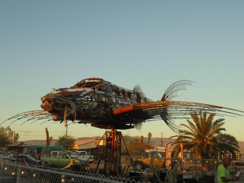 Da Vinci Fish - photo by Rob Williams