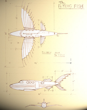 da Vinci Fish at Bombay Beach Biennale