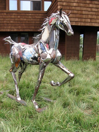 SCRAPPY HORSE IN C.B. AT RESIDENCE