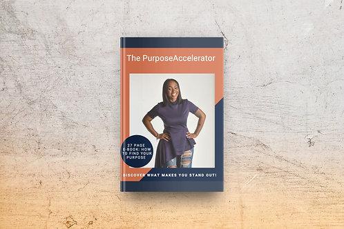 The Purpose Accelerator Ebook