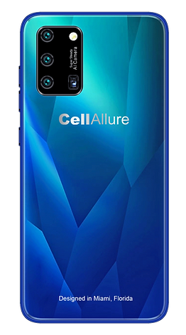 CHIC-X2 Blue Back.png