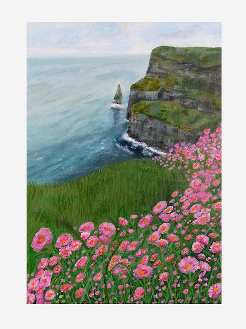 The Pink Cliffs of Moher (County Clare, Ireland)