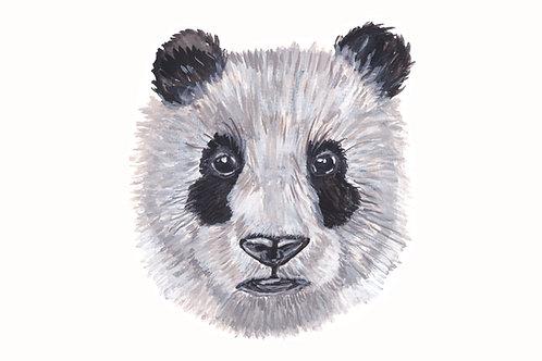 Panda Portrait - Gallery Quality Print