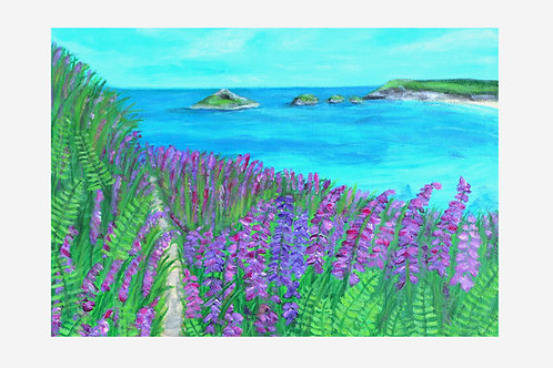 Foxgloves on Crantock Beach (Cornwall)
