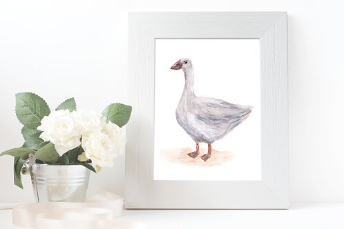 Goose - Gallery Quality Print