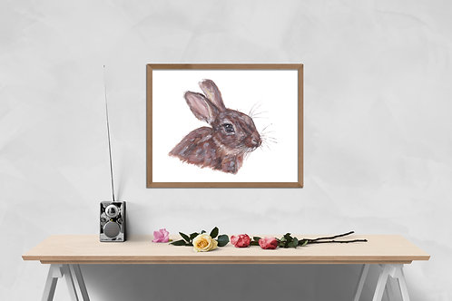 Bunny - Gallery Quality Print