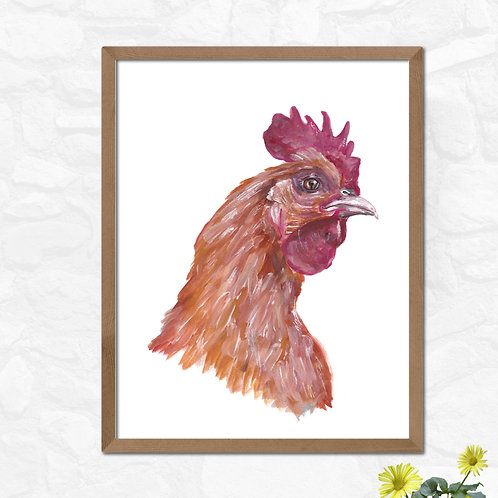 Chicken - Gallery Quality Print