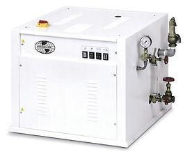 Мощность 60 кВт, обеспечивает паром среднее производство химчистки до 250 изделий в час и более 5 потребителей пара.