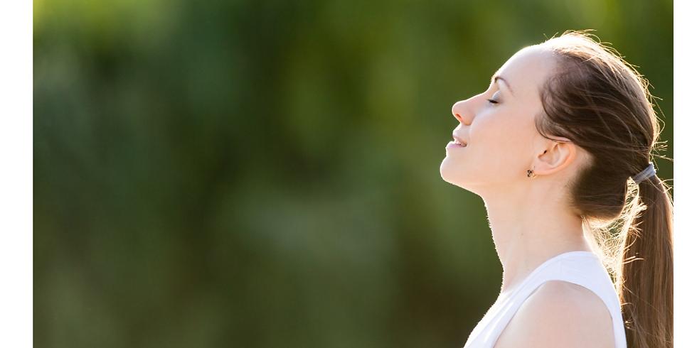 10 Week - Mindfulness Intensive