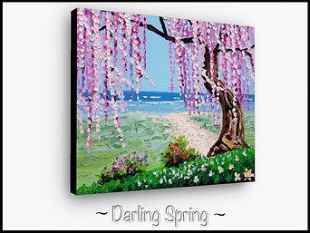Darling Spring